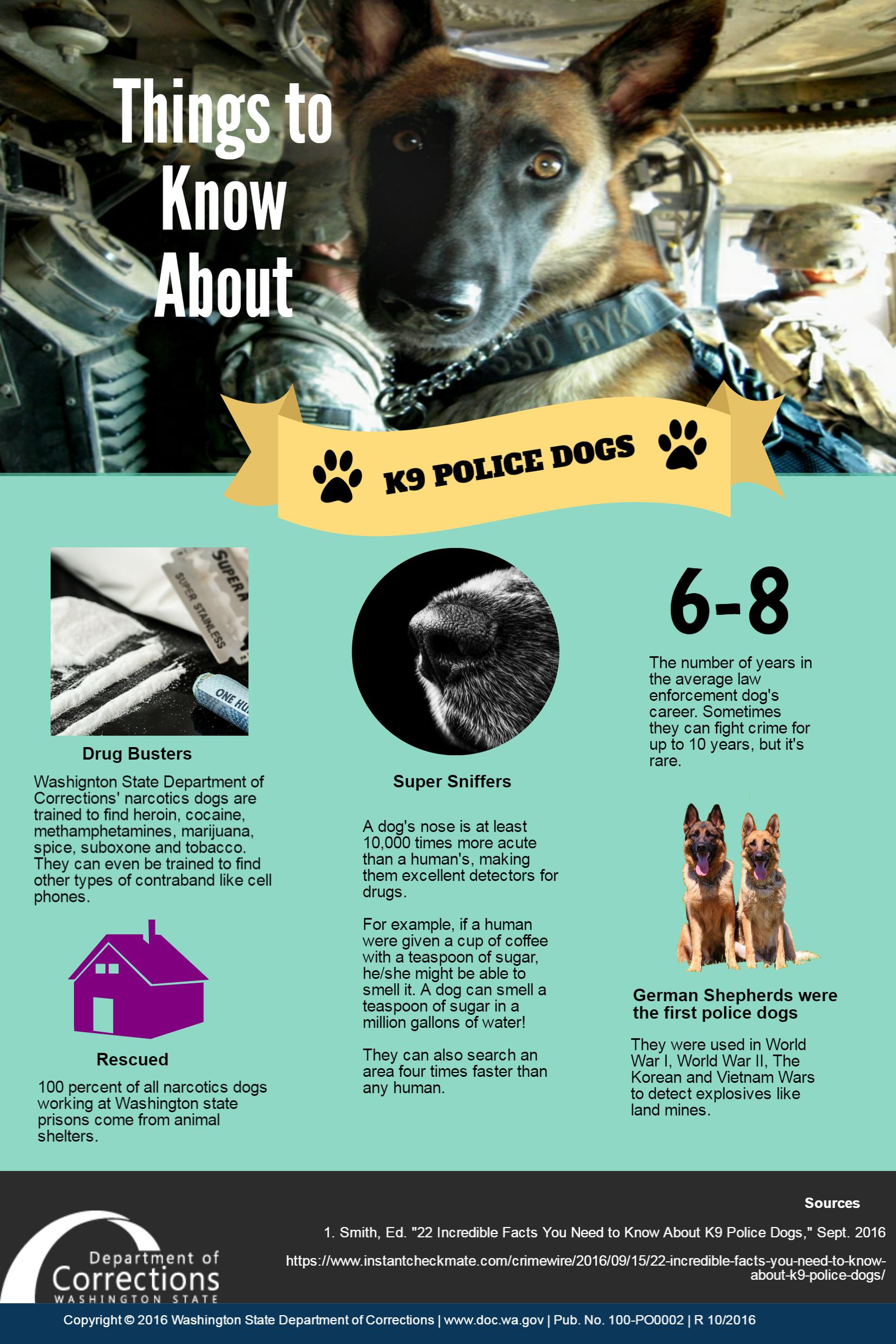 Washington State Doc >> INFOGRAPHIC: Things to Know About K9 Police Dogs ...